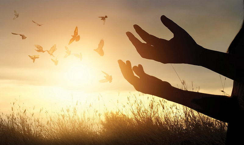 A beautiful image showing the sunset, birds flying back and hands spread open towards the sky.